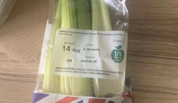 """""""Zvíře leželo v naší ledničce šest dní"""": Muž našel domácího mazlíčka v balíčku celeru"""