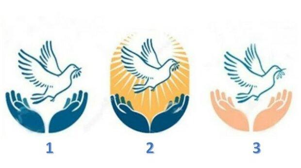 Vybraná vámi holubice prozradí poselství pro vás