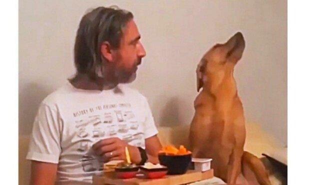 Pes vtipně předstírá, že ho vůbec nezajímá, jak jeho páníček jí dobroty