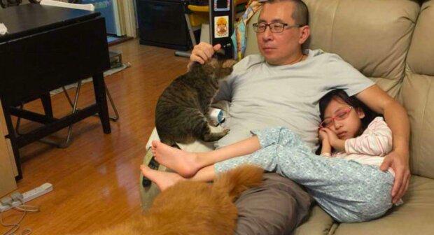 Proč otec, dcera, pes a kočka dělají stejnou fotografii každý rok během desetiletí