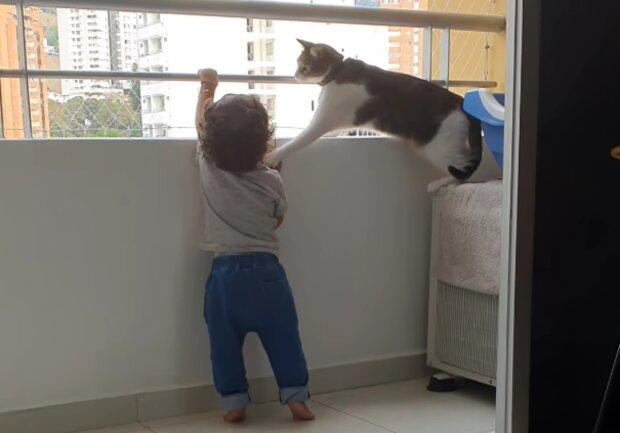 Dítě a kočka. Foto: snímek obrazovky YouTube