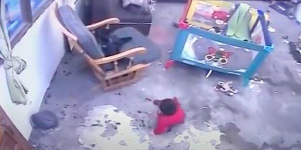 Díky kamerovému systému rodiče se dozvěděli o tom, jak kočka zahránila jejich dítě