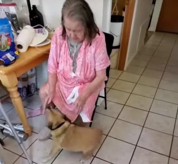 Majitelka a pes. Foto: snímek obrazovky YouTube