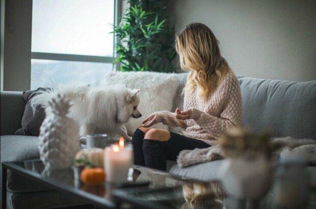 Vůně do bytu: jak udělat, aby to doma vždy hezky vonělo