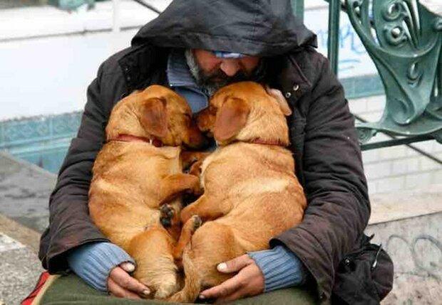 Někdy jsou psi to poslední, co lidem umožňuje zůstat lidmi, i když jste přišli o všechno: Fotografie důkazů, že svět není beznadějný
