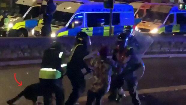 Udělal to, co ho naučili: policejní pes kousl policistu, který týral protestujícího
