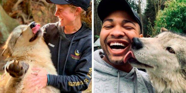 """""""Lovci srdcí"""": ostrov s přírodní rezervací, kde je možné vydat se na exkurzi s přátelskými vlky"""