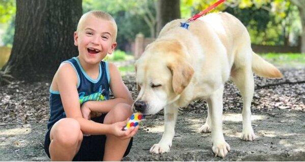 Stovky psích životů byly zachráněny, a to není limit: Romanovi je pouhých 7 let, ale tvrdohlavo chrání zvířata