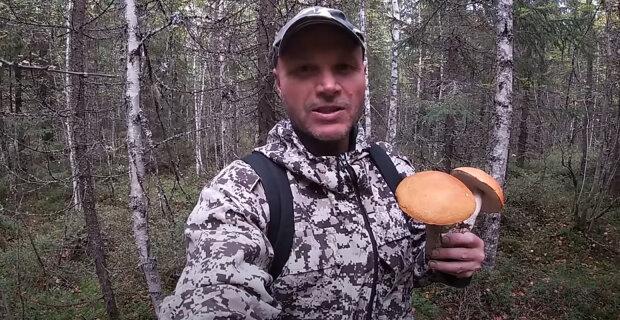Nadějné vyhlídky pro příští dny mají před sebou houbaři: Meteorologové slibují počasí, po kterém houby dobře rostou