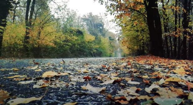 """""""S pokračujícím podzimem budou průměrné týdenní teploty postupně klesat"""": meteorologové řekli, zda si s sebou vzít deštník"""